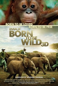 Kid's Movie Mini Review: Born To Be Wild IMAX 3D