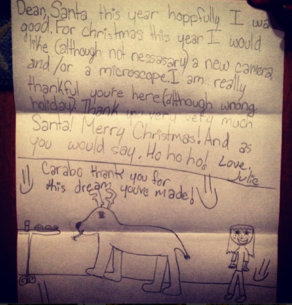 The Bear's Beautiful Christmas Letter List to Santa_Dec 2013