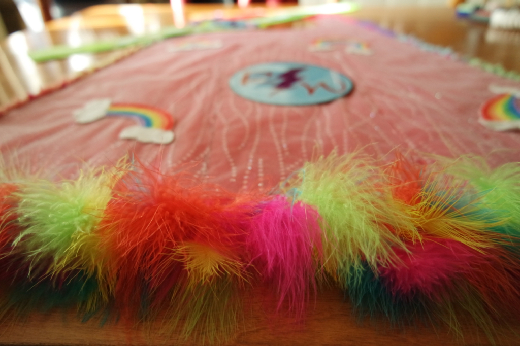 Homemade Halloween Costume Rainbow Warrior Logo on Cape Trim