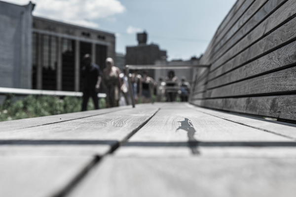 Photos from the NYC High Line Sunday June 14 2015