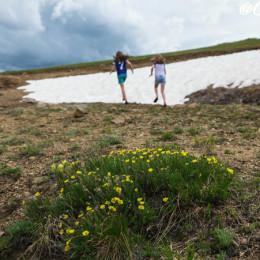 A Mid-Summer Snowball Fight