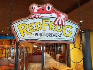 An Entrepreneurial Start Up Craft Brewery On Board The Carnival Vista