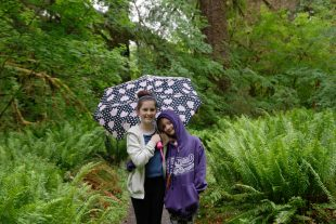 On The Loop Trail In The Hoh Rainforest With An Umbrella