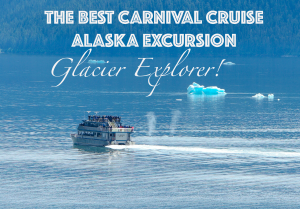 Best Alaska Cruise Excursion