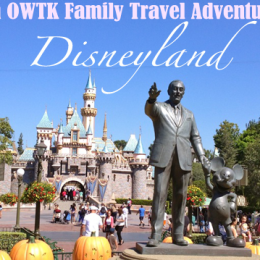 American Family Adventure Series — Disneyland