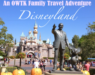American Family Adventure Series — Disneyland