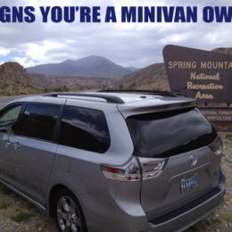 7 Signs You're a Minivan Owner