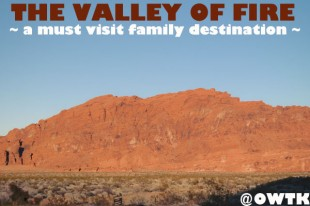 The Valley of Fire is a Must Visit Family Travel Destination