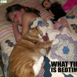 What Time Is The Best Time for Bedtime?