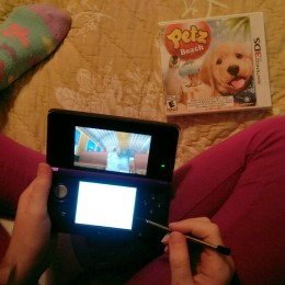 OWTK Petz Beach 3DS Review on lap