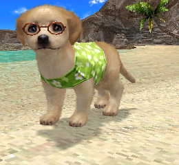 Petz Beach 3DS Review Dog Screen Shot