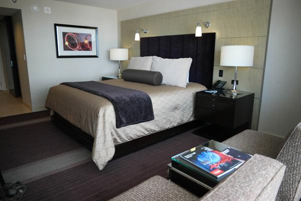 Aria Resort Las Vegas Room View