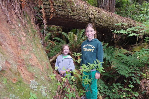 Kids in the Redwood Forest_Crescent City CA_July 14 2014_Jeff Bogle NXMini Imagelogger