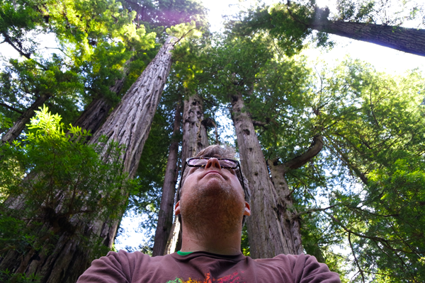 Redwood Tree Selfie_Crescent City CA_Jeff Bogle NXMini Imagelogger