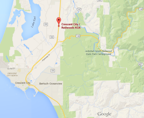 Redwoods on Google Maps