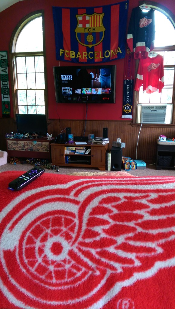 Netflix Roku and Red Wings