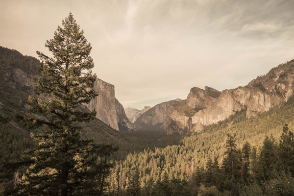 13 Travel Experience Kids Should Have Before They Grow Up_Yosemite