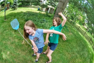 How We Got Rid Of Mosquitoes And Learned To Love (Our Backyard) Again