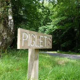 A Visit To The Real Hundred Acre Wood In England with Piglet and Pooh