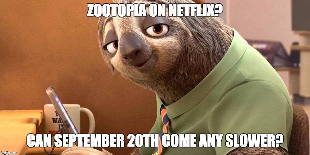 zootopia-meme