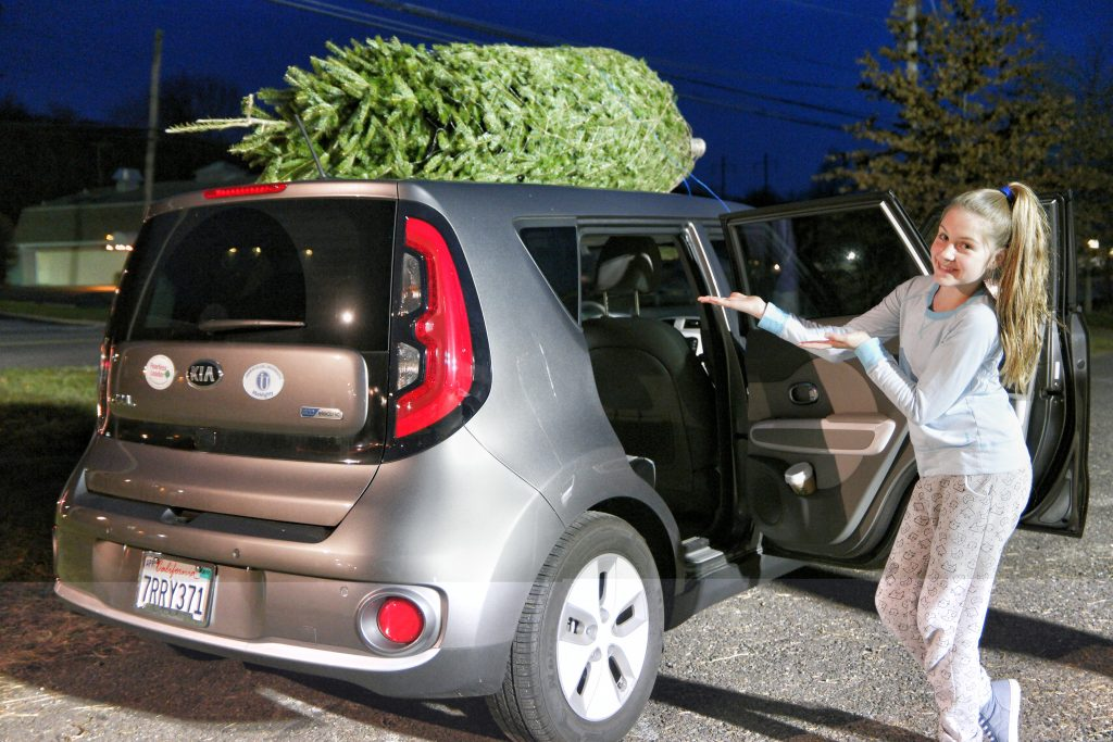 getting our 2016 christmas tree in the kia soul