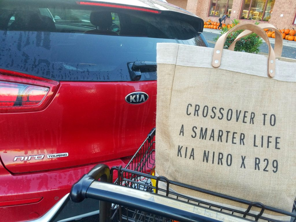 Kia Niro Freelancer Dream Car