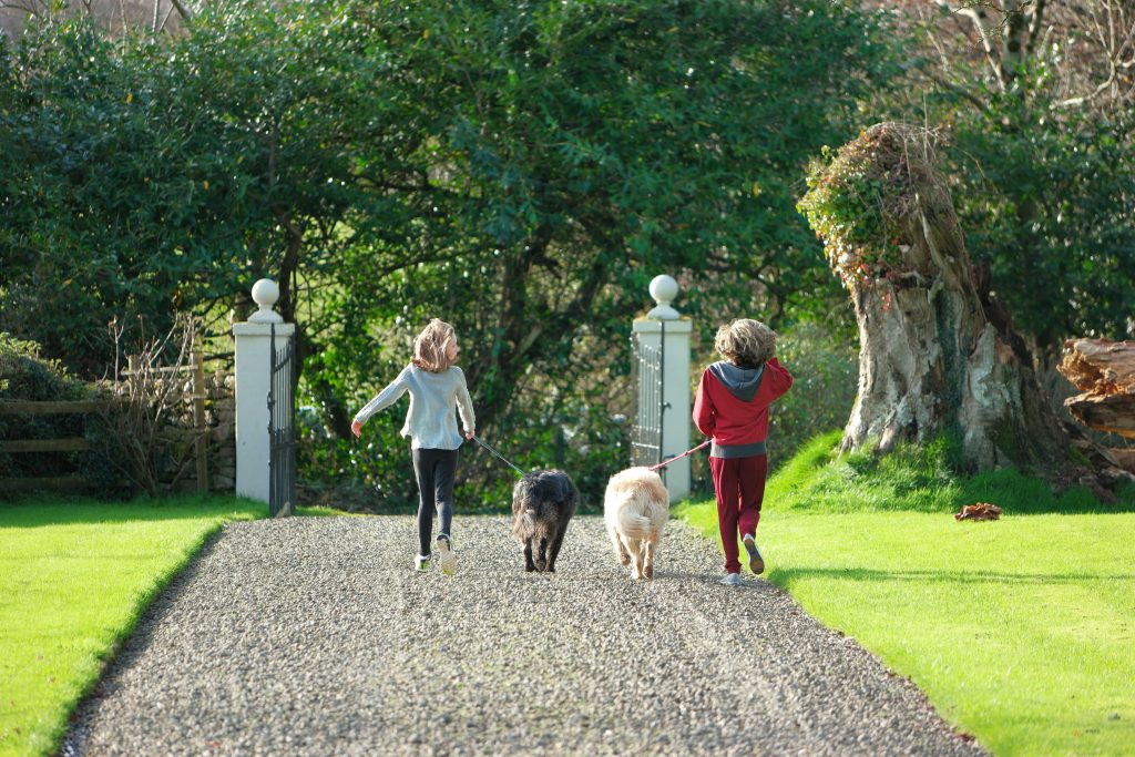 Perfect Ireland Holiday at Meelick House County Clare