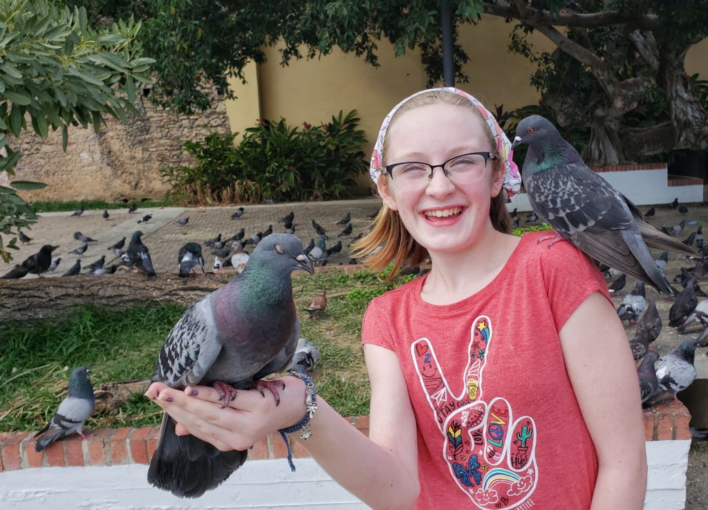 Best Vacation Ideas with Young Adults Pigeon Park Old San Juan