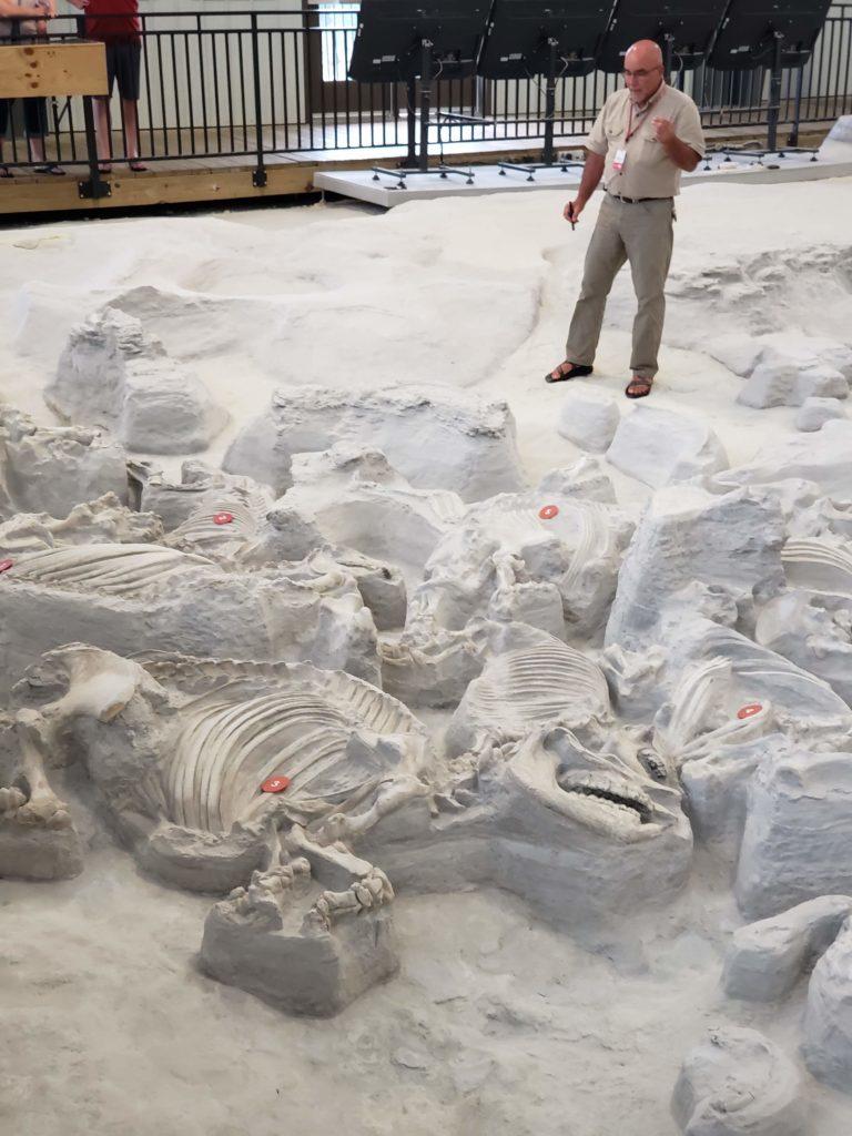 Ashfall Fossil Beds Nebraska